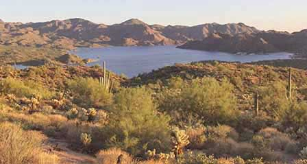 Picture of Bartlett Lake in Arizona