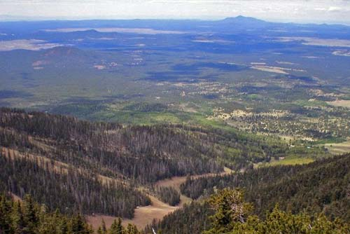 View From Humphreys Peak Trail