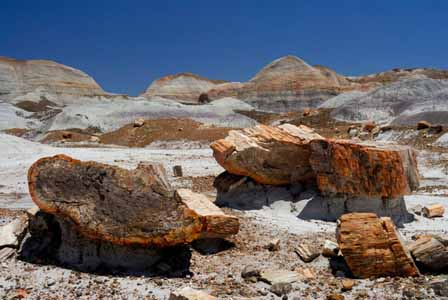 Where Is The Painted Desert Located In Arizona