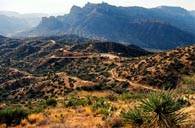 Reavis Ranch Trail Near Superstition Mountains