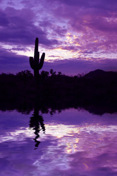 Mesa Az >> Arizona Sunsets | Arizona Sunset Pictures