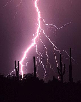 Tucson Pictures Arizona Photos Photo Gallery