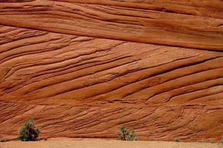 Picture of Vermillion Cliffs - Buckskin Gulch Trail