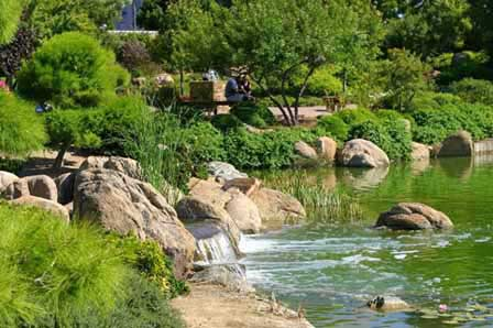 Beau Photo Of Japanese Friendship Garden In Phoenix