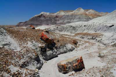 It Begins About 30 Miles North Of Cameron Arizona Near The Southeastern Rim Grand Canyon To Petrified Forest 26