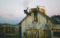 Rawhide Stunt Shows